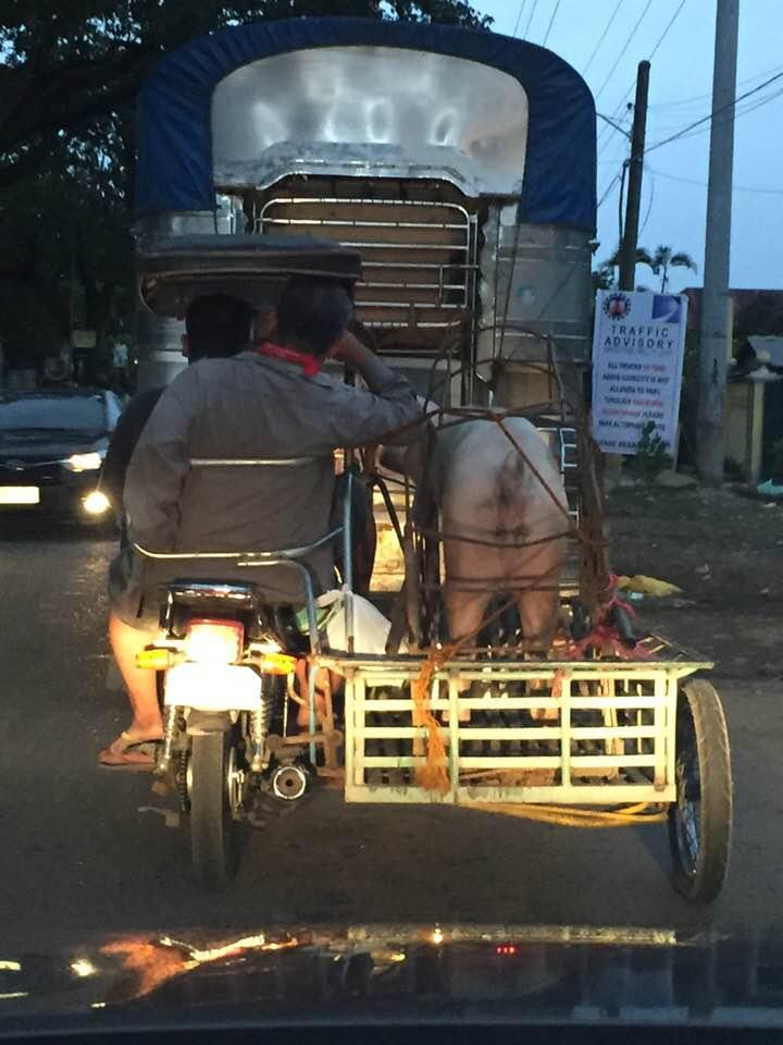 菲律賓塞車