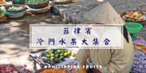 菲律賓冷門水果