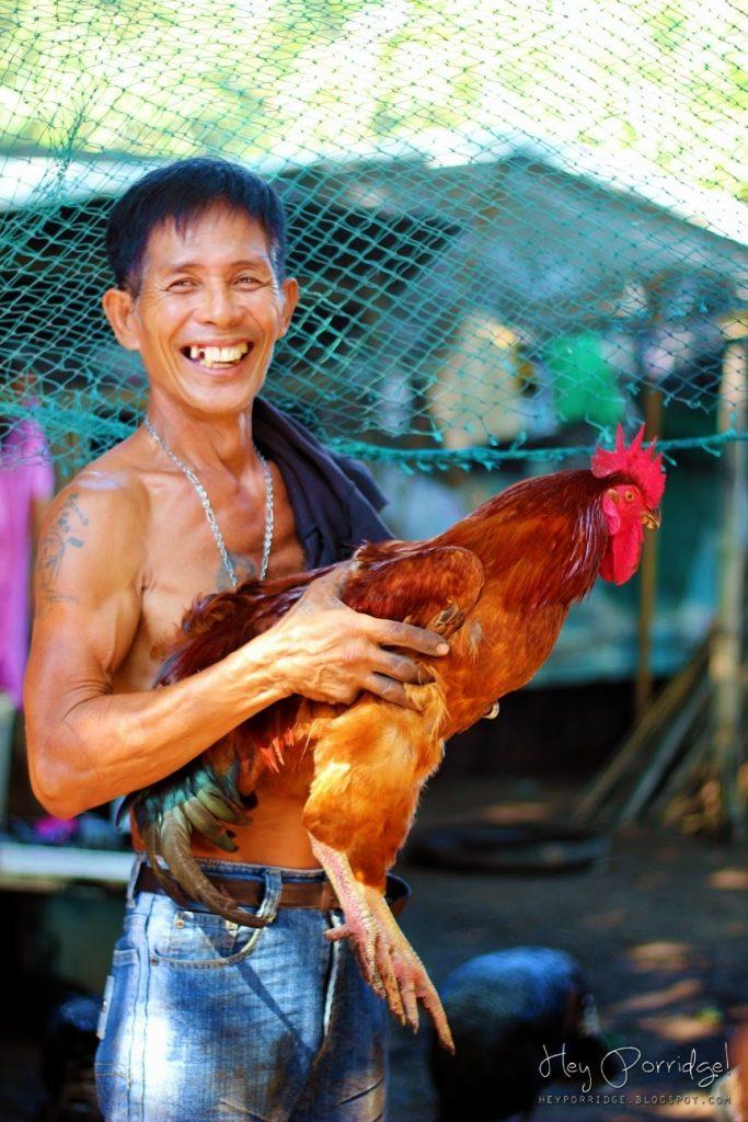菲律賓與雞